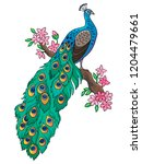 peacock sitting on a flowering... | Shutterstock .eps vector #1204479661