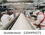 workers at meet industry handle ... | Shutterstock . vector #1204494271