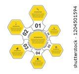 vector flat hexagon options...   Shutterstock .eps vector #1204501594
