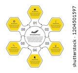 vector flat hexagon options...   Shutterstock .eps vector #1204501597