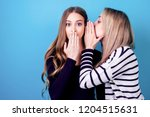 portrait of two young... | Shutterstock . vector #1204515631