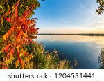colorful autumn background | Shutterstock . vector #1204531441
