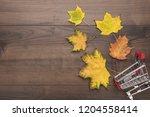 shopping trolley over wooden...   Shutterstock . vector #1204558414