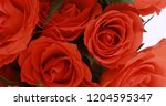 valentine's day roses close up.   Shutterstock . vector #1204595347