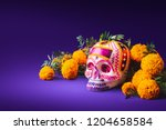 Stock photo high contrast image of a sugar skull used for dia de los muertos celebration in a purple 1204658584