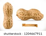 peanut. 3d vector realistic icon | Shutterstock .eps vector #1204667911