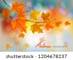 autumn nature background with...   Shutterstock .eps vector #1204678237