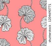 botanical illustration. hand... | Shutterstock .eps vector #1204690771
