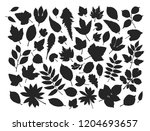 set leaves and grass. nature... | Shutterstock .eps vector #1204693657