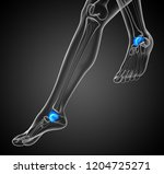 3d render illustration of the... | Shutterstock . vector #1204725271