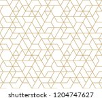 abstract geometric pattern with ... | Shutterstock .eps vector #1204747627