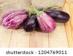 raw purple conventional... | Shutterstock . vector #1204769011