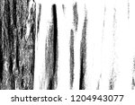 abstract background. monochrome ... | Shutterstock . vector #1204943077