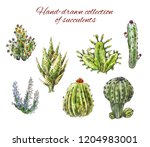 several hand drawn cacti.... | Shutterstock . vector #1204983001