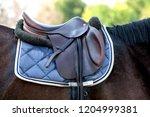 A Saddle Saddled On The Back O...