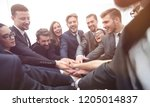 large group of business people... | Shutterstock . vector #1205014837