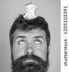 man handsome hipster long beard ...   Shutterstock . vector #1205103391