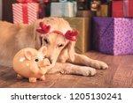 golden retriever dog in deer...   Shutterstock . vector #1205130241
