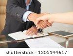 close up of businessman... | Shutterstock . vector #1205144617