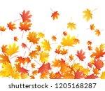 maple leaves vector background  ... | Shutterstock .eps vector #1205168287