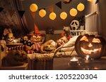 little girl is sleeping in a... | Shutterstock . vector #1205220304