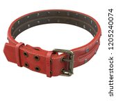 doggy leather collar on an... | Shutterstock . vector #1205240074