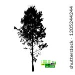silhouette of realistic trees | Shutterstock .eps vector #1205244244
