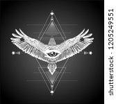 sacred geometry.geometric... | Shutterstock .eps vector #1205249551