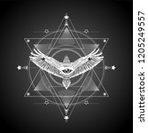 masonic symbol.all seeing eye... | Shutterstock .eps vector #1205249557