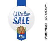 winter discount sale banner... | Shutterstock .eps vector #1205265094