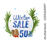 winter circle sale banner with... | Shutterstock .eps vector #1205265097