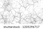 dry brush strokes and scratches ...   Shutterstock .eps vector #1205296717