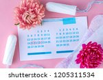 tampons and pads for... | Shutterstock . vector #1205311534