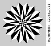 star mandala in black and white   Shutterstock .eps vector #1205317711