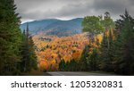 route 73 showing autumn colors... | Shutterstock . vector #1205320831