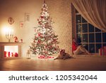 woman at christmas   | Shutterstock . vector #1205342044