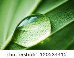 Water Drop Macro Close Up