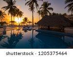 amazing nature sunset landscape.... | Shutterstock . vector #1205375464
