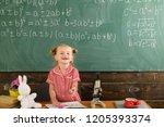 schoolgirl smile on classroom... | Shutterstock . vector #1205393374