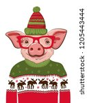pig in a santa's in a christmas ... | Shutterstock .eps vector #1205443444