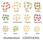 set of hand drawn colored beans ... | Shutterstock .eps vector #1205516341