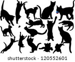 Stock vector cat and kitten vector silhouette on white background with moustaches layered fully editable 120552601
