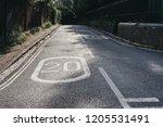 twenty miles per hour speed... | Shutterstock . vector #1205531491