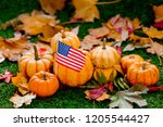 Group Of Pumpkins And American...