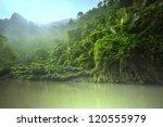 jungle in vietnam   Shutterstock . vector #120555979