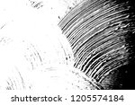 abstract background. monochrome ... | Shutterstock . vector #1205574184