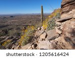 Desert landscape as seen from the Blackett