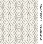 pattern with thin straight... | Shutterstock .eps vector #1205629987