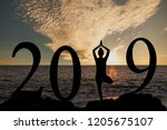 new year 2019 yoga concept... | Shutterstock . vector #1205675107
