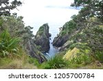 rough coast on pirate island | Shutterstock . vector #1205700784